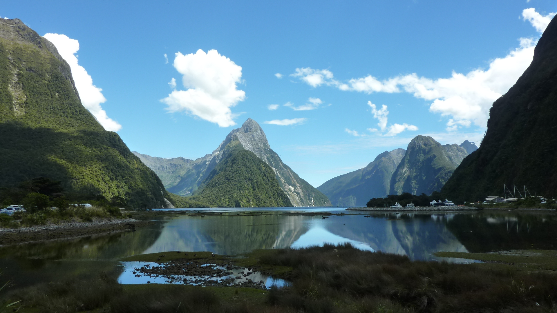 An Unforgettable Journey into Milford Sound