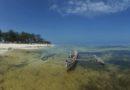 #ZNZ: Hakuna Matata: Sansibar – Inselperle im indischen Ozean