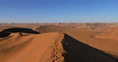 #NAM: Namibia in 10 Tagen – Schotterpisten, Einsamkeit und wilde Tiere